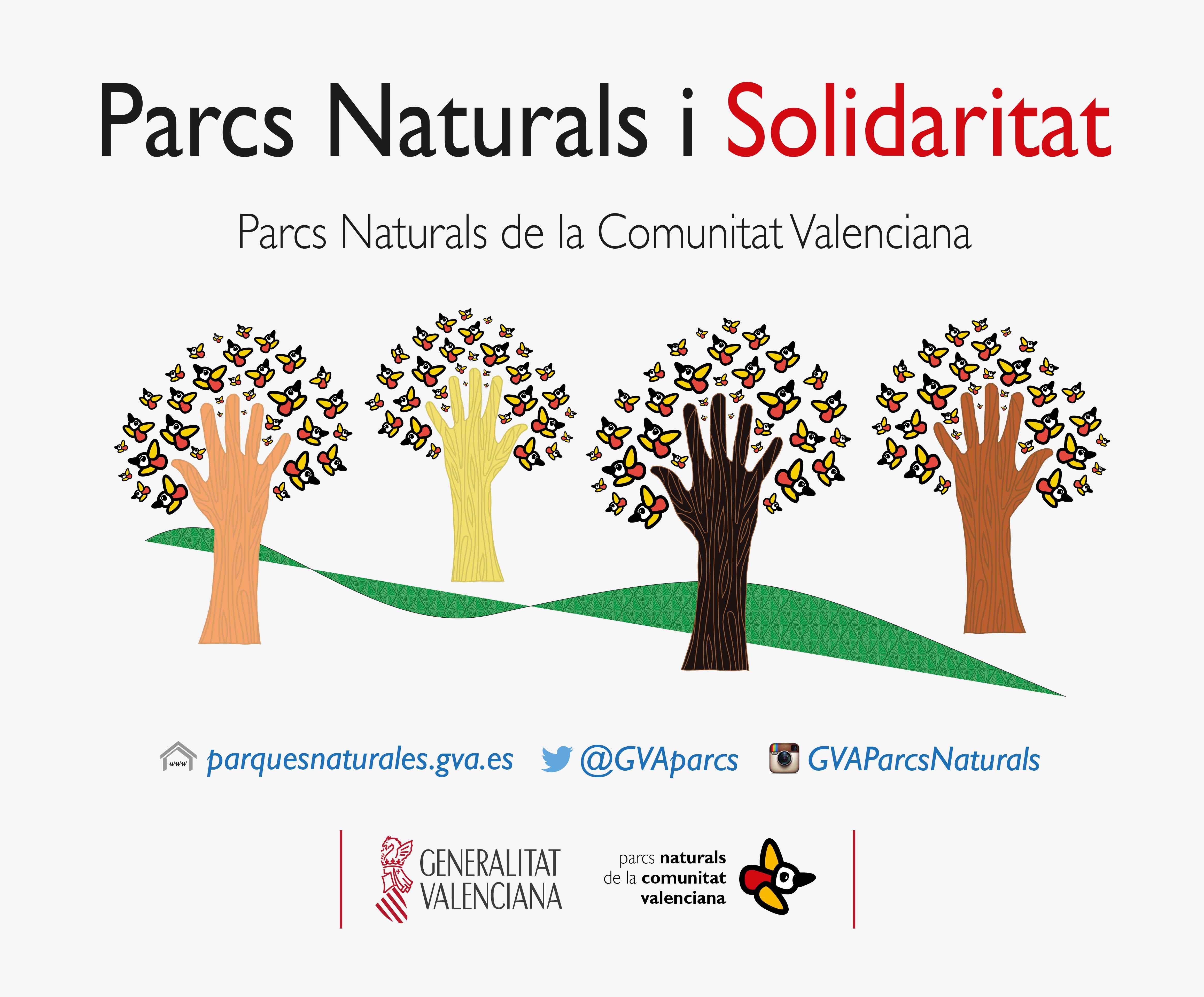 Cartel_PNs_i_Solidaritat2